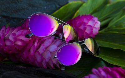 Vivez la vue en Maui Jim